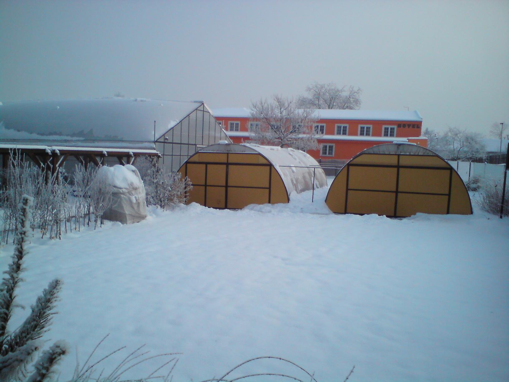 2010-12-vánoce na zahradě 2