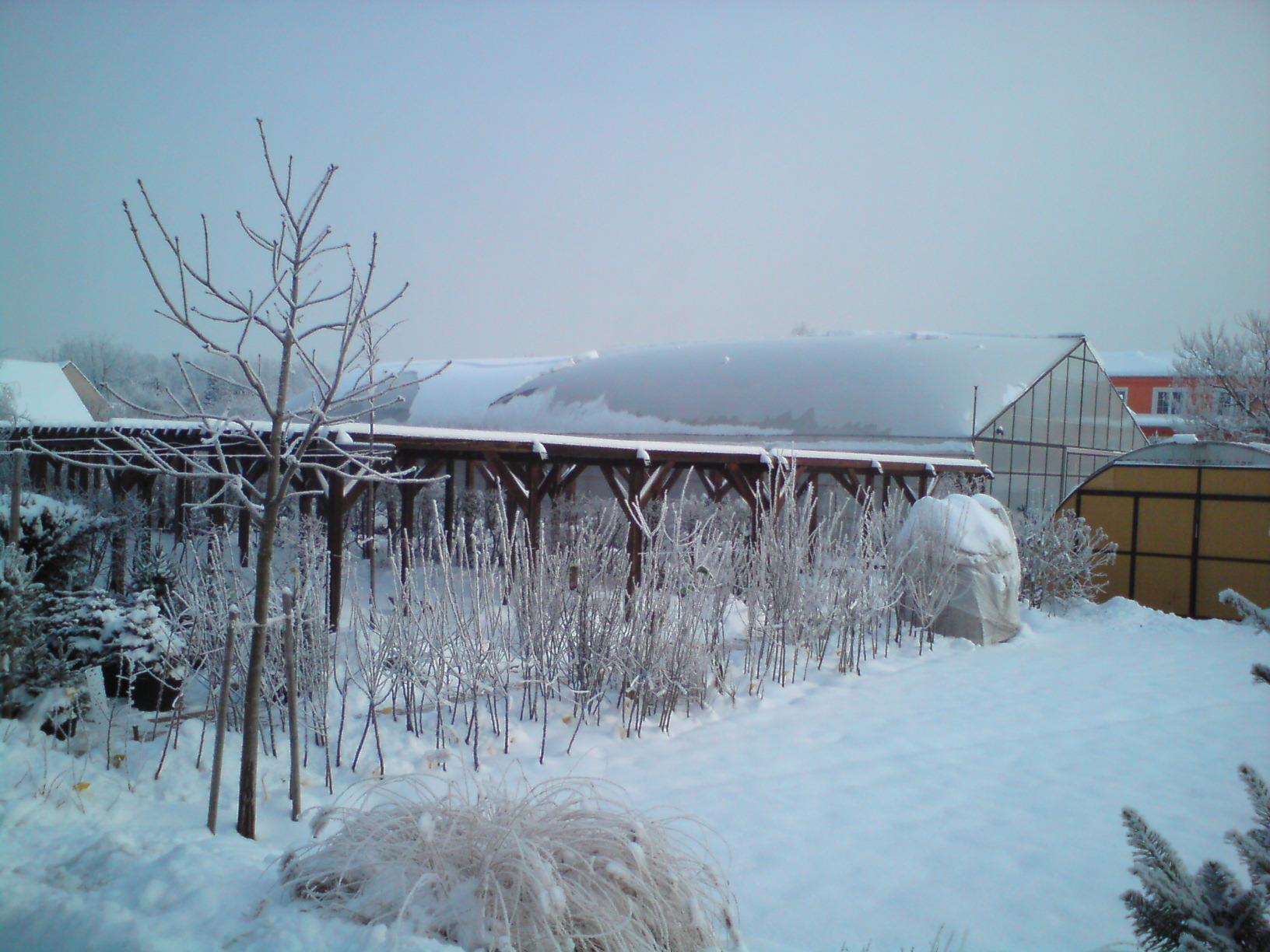 2010-12-vánoce na zahradě