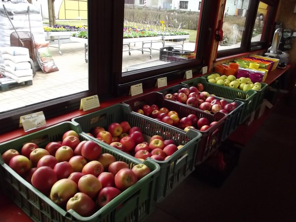 prodej jablek001